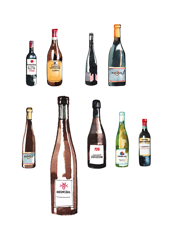 illustration of different kind of wine bottles from Europe, watercolor
