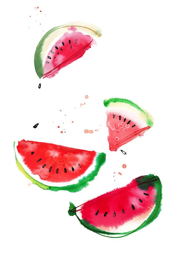 Watermelon, watercolor food illustration