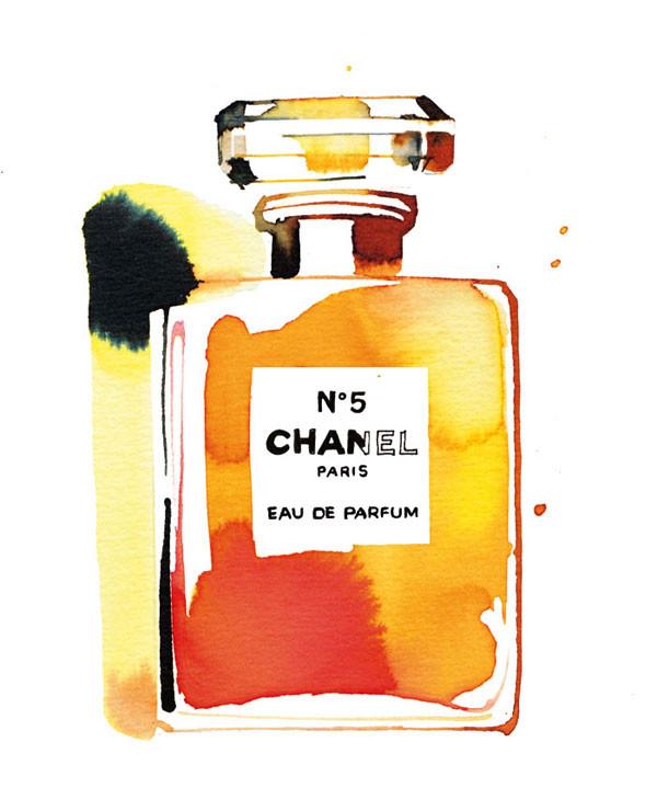 Chanel no.5, watercolor illustration