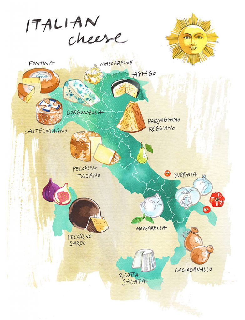 illustrated Map of Italian cheese, watercolor