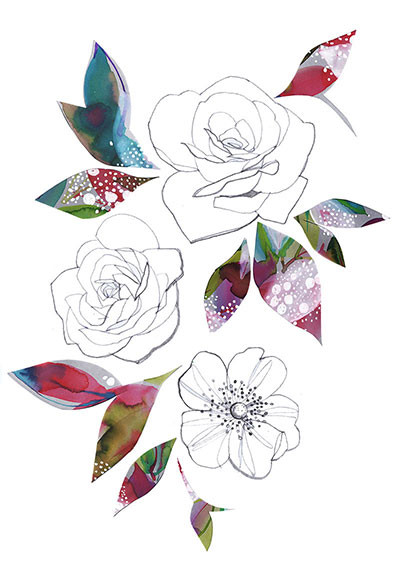 Roses, pencil and collage illustration