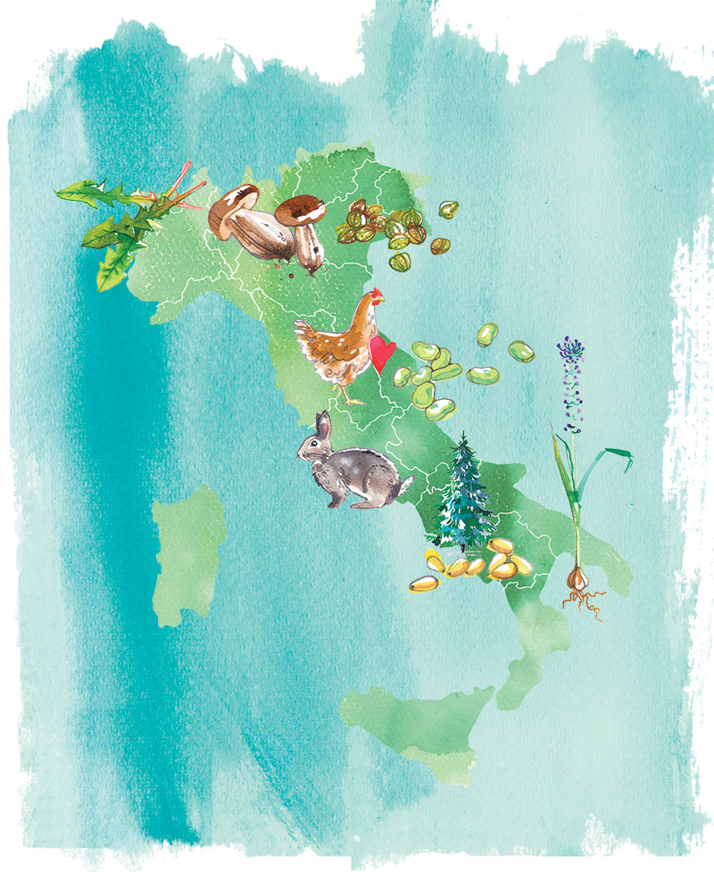 """MIGUSTO magazine, 2021, """"Wild Italy"""" - illustrated map about unique and wild Italian food specialities, region by region"""