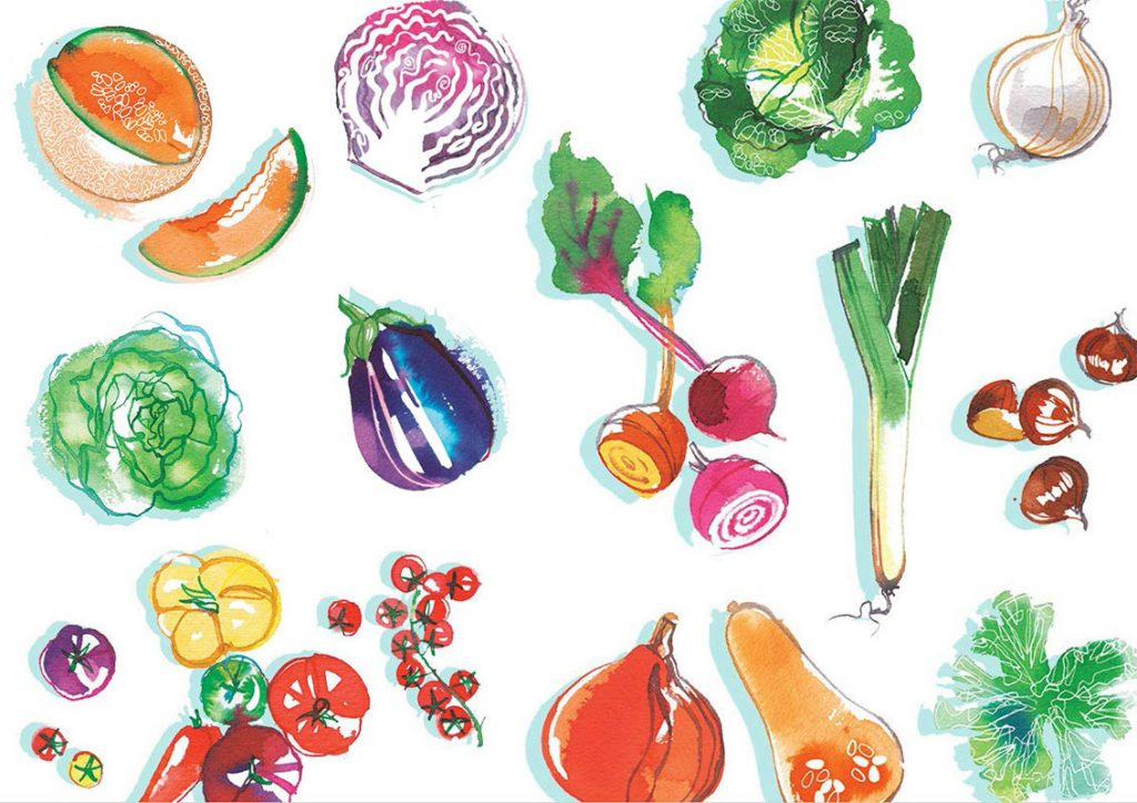 Madame Figaro CUISINE, 2019, Summer and Autumn vegetables, watercolor food illustration